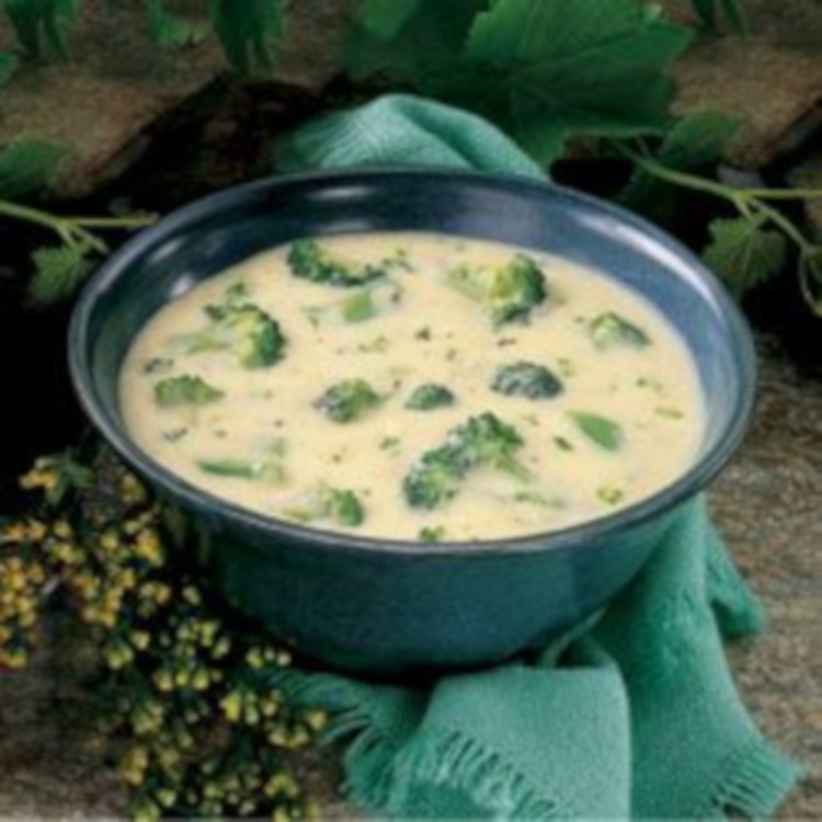 Cream of Brocolli